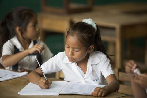 Infografía: Los 6 mitos del currículo nacional
