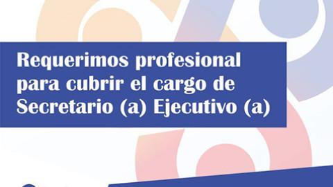 CNE Convocatoria Sectretario(a) Ejecutivo(a)