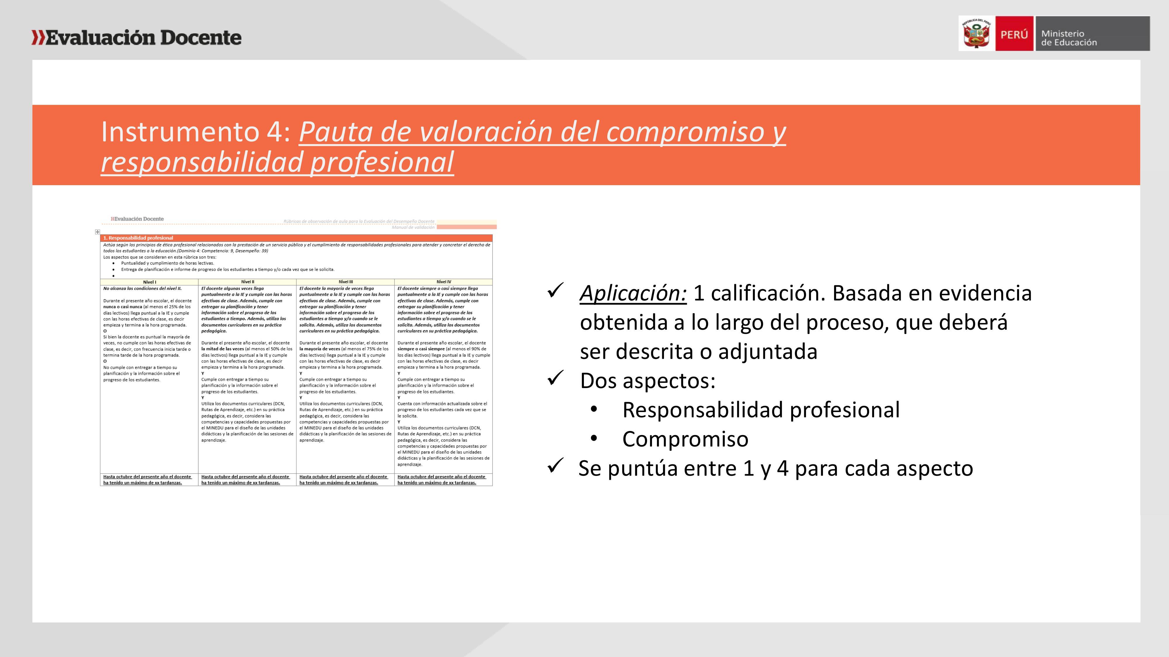 Exposición sobre evaluación de desempeño por Giuliana Espinoza ...