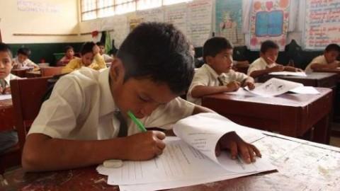 San Martín: evalúan a más de 19 mil alumnos de primaria en comprensión lectora