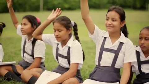 Expertas de la OEA y la ONU expresan su preocupación por la situación del Currículo Nacional de Educación