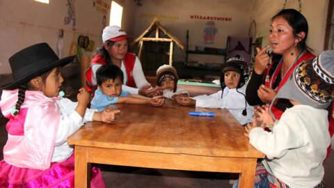 Para ser director de una Red Educativa Rural se requiere título de profesor